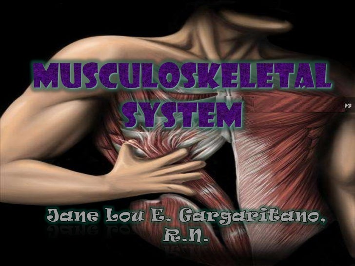 Musculoskeletal system<br />Jane Lou E. Gargaritano, R.N.<br />
