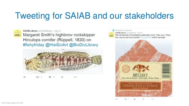 Tweeting for SAIAB and our stakeholders © 2016 Sally Schramm CC-BY