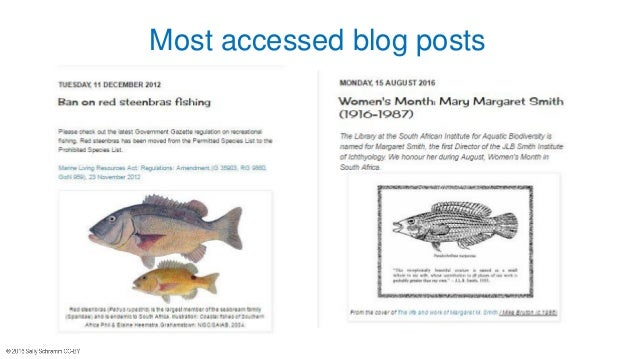 Most accessed blog posts