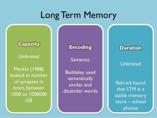 capacity of long term memory In two experiments, the role of working memory capacity (wmc) in the controlled  search of long-term memory was examined participants.