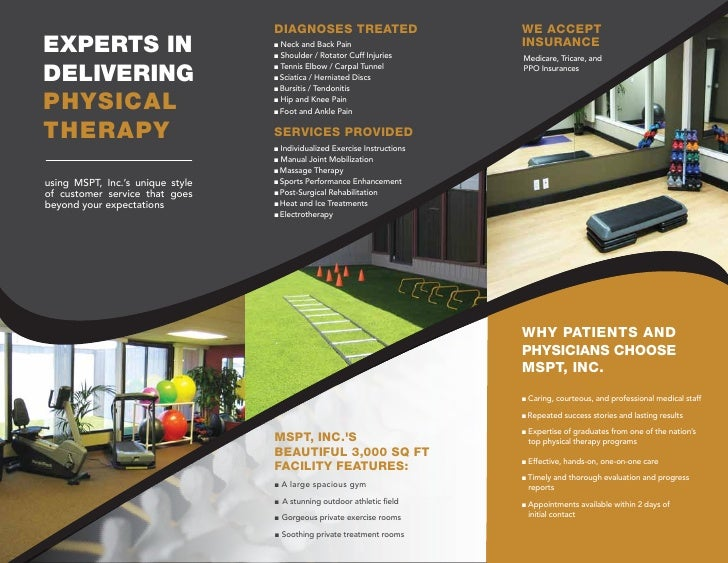 Movement Systems Physical Therapy, Inc. Brochure