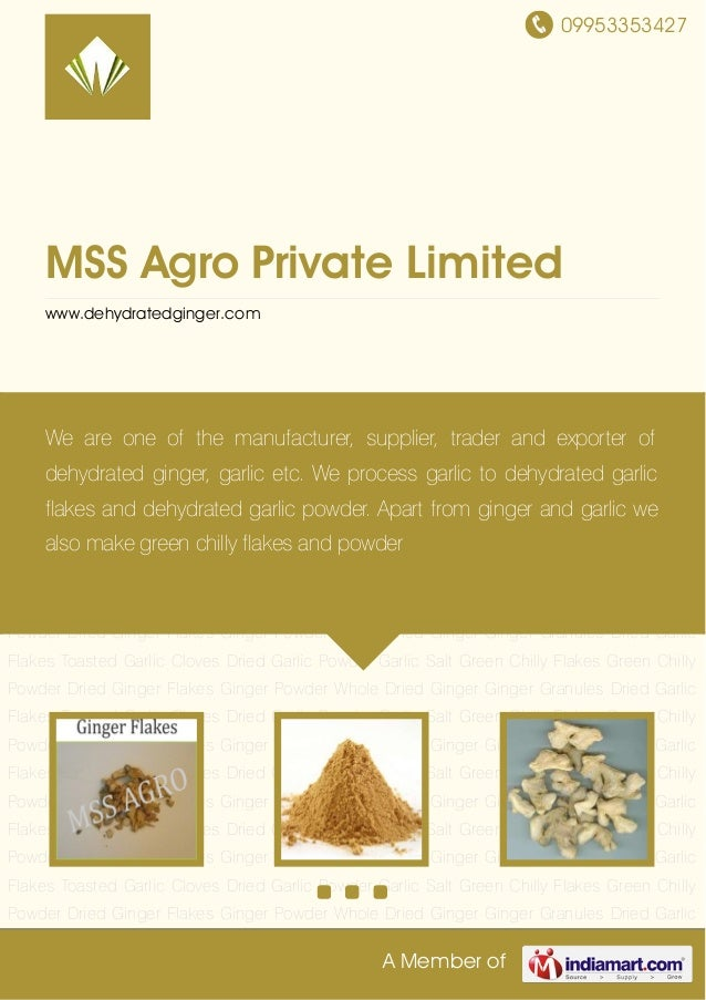09953353427 A Member of MSS Agro Private Limited www.dehydratedginger.com Dried Ginger Flakes Ginger Powder Whole Dried Gi...