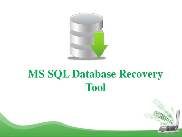 MS SQL Database Recovery Tool