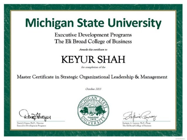 MSU - Strategc Organizational Leadership & Management