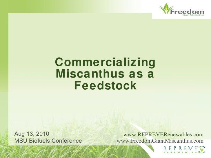 Commercializing Miscanthus as a Feedstock www.REPREVERenewables.com www.FreedomGiantMiscanthus.com Aug 13, 2010 MSU Biofue...