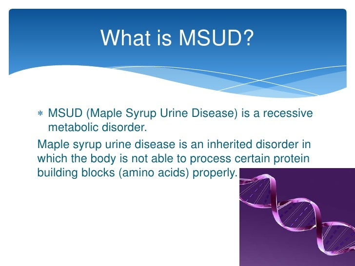 maple syrup urine disease Maple syrup urine disease (msud) is a rare, autosomal recessive disorder of  branched-chain amino acid (bcaa) metabolism caused by dysfunction of the.