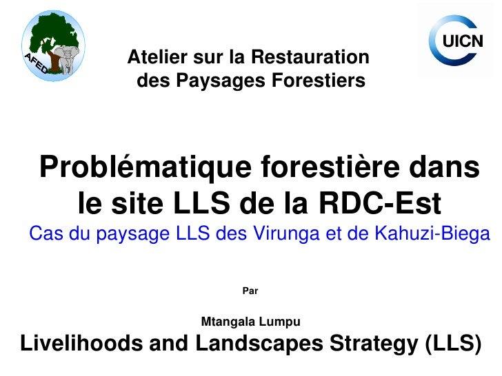 Atelier sur la Restauration            des Paysages Forestiers     Problématique forestière dans    le site LLS de la RDC-...