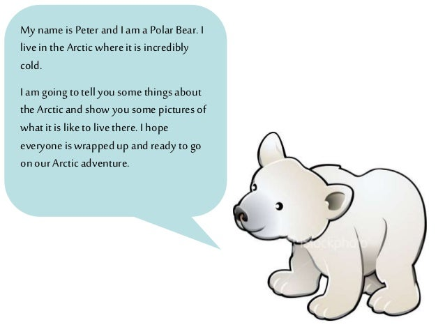 an overview of the bear Free summary and analysis of the events in ben mikaelsen's touching spirit bear that won't make you snore we promise.