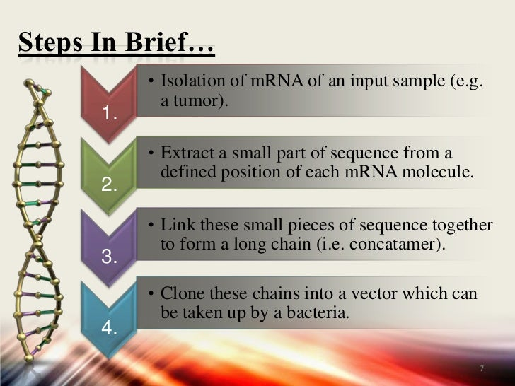 Study of gene expression