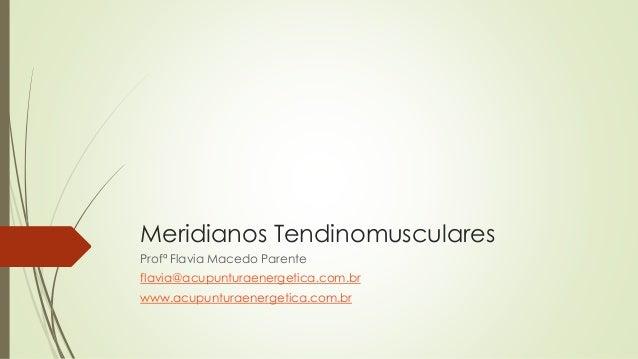 Meridianos Tendinomusculares Profª Flavia Macedo Parente flavia@acupunturaenergetica.com.br www.acupunturaenergetica.com.br