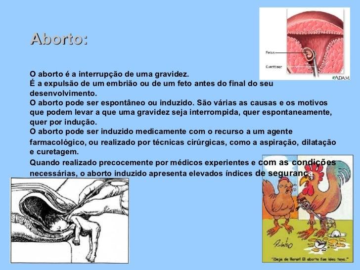 <ul><li>Aborto: </li></ul><ul><li>O aborto é a interrupção de uma gravidez. É a expulsão de um embrião ou de um feto antes...