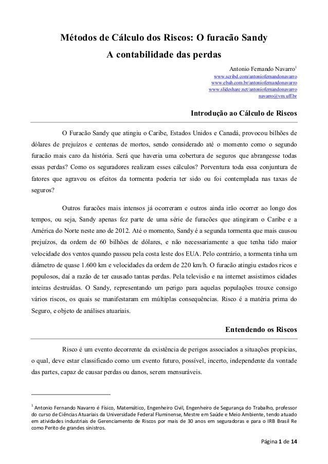 Página 1 de 14 Métodos de Cálculo dos Riscos: O furacão Sandy A contabilidade das perdas Antonio Fernando Navarro1 www.scr...