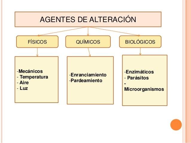 AGENTES DE ALTERACIÓN FÍSICOS  -Mecánicos - Temperatura - Aire - Luz  QUÍMICOS  -Enranciamiento -Pardeamiento  BIOLÓGICOS ...
