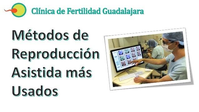 Clínica de Fertilidad Guadalajara