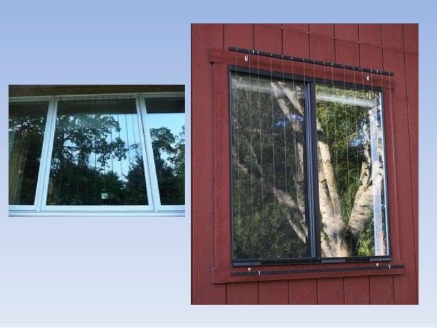 M todos para evitar que las aves choquen contra ventanas - Evitar condensacion ventanas ...