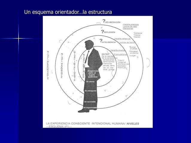 Un esquema orientador…la estructura