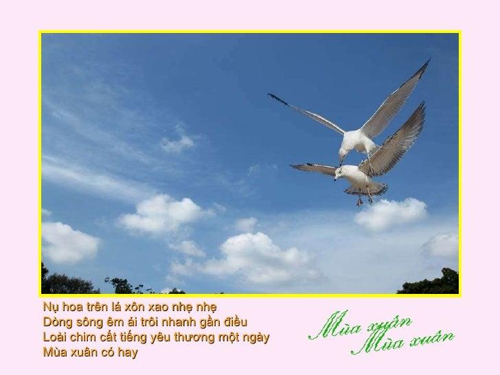 Nụ hoa trên lá xôn xao nhẹ nhẹ  Dòng sông êm ái trôi nhanh gần điều  Loài chim cất tiếng yêu thương một ngày  Mùa xuân có ...