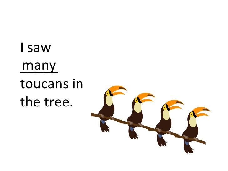 I sawmany_____toucans inthe tree.