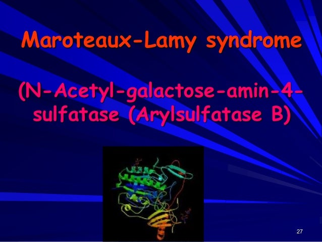 28 Maroteaux-Lamy syndrome
