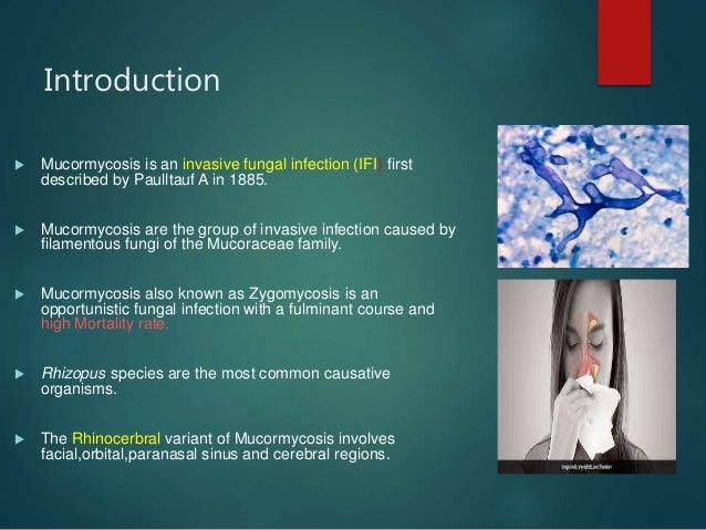 Mucormycosis Slide 2