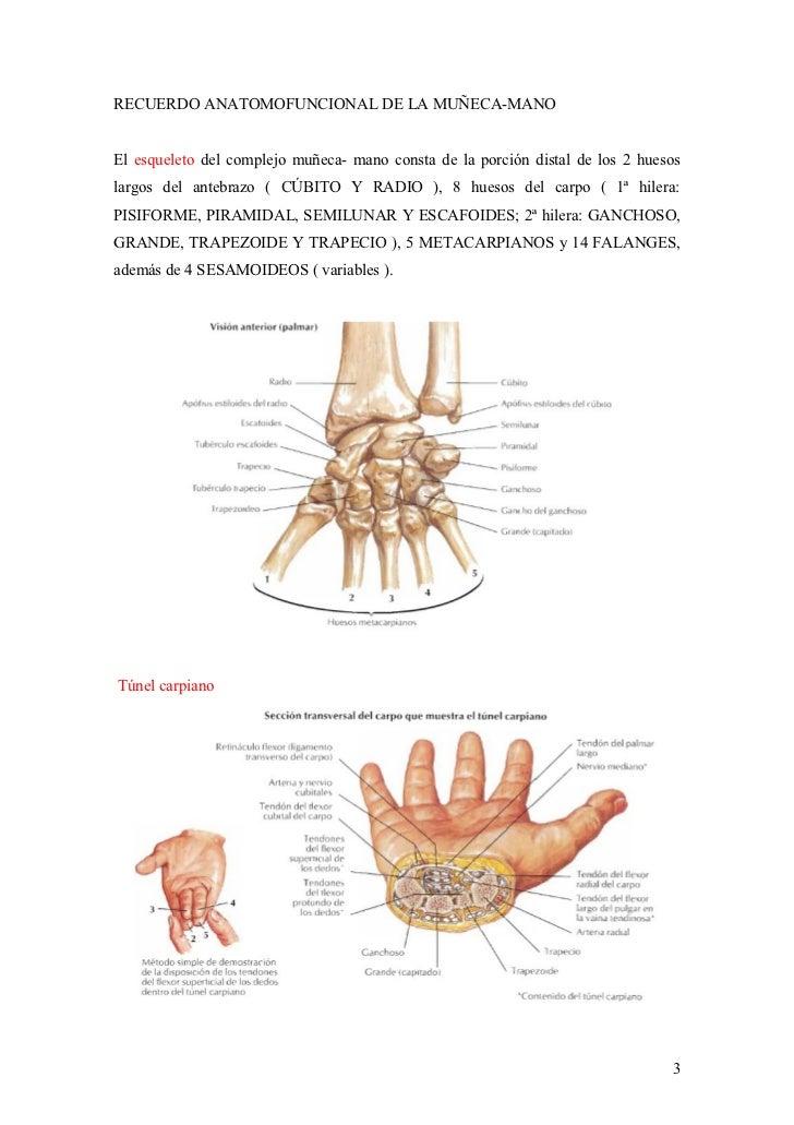 2012-09-18)Patologia habitual de muñeca-mano II.doc