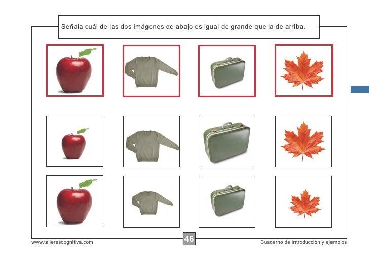 Señala las de las dos imágenes de abajo es igual de grande que la de arriba.            Escribir cuálinstrucciones...www.t...