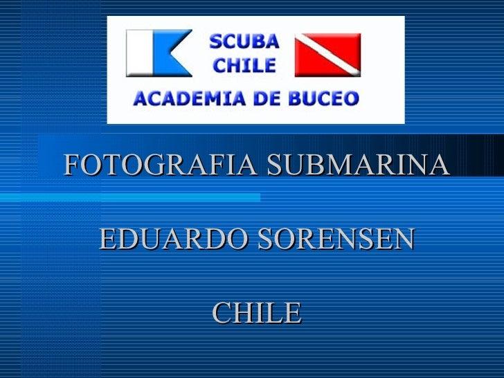 FOTOGRAFIA SUBMARINA EDUARDO SORENSEN CHILE