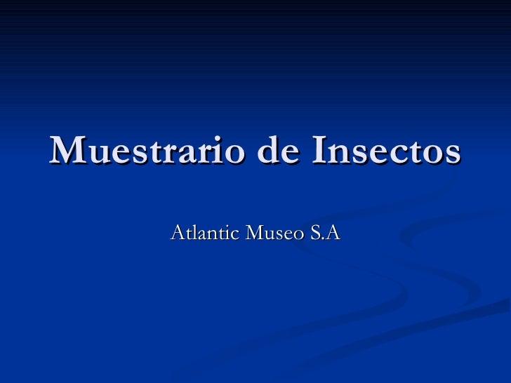 Muestrario de Insectos Atlantic Museo S.A
