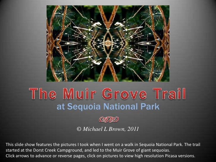 The Muir Grove Trail<br />at Sequoia National Park<br /><br />© Michael L Brown, 2011<br />This slide show features the ...