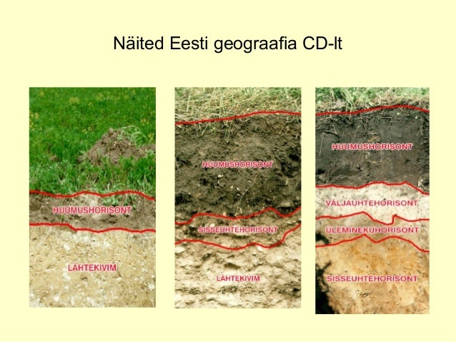 Näited Eesti geograafia CD-lt