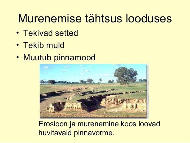 Muld Slide 3