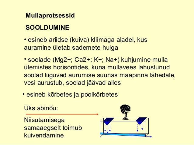 Üks abinõu: Niisutamisega samaaegselt toimub kuivendamine Mullaprotsessid SOOLDUMINE • esineb ariidse (kuiva) kliimaga ala...
