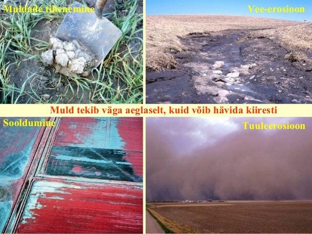 Muldade tihenemine Vee-erosioon Sooldumine Tuuleerosioon Muld tekib väga aeglaselt, kuid võib hävida kiiresti