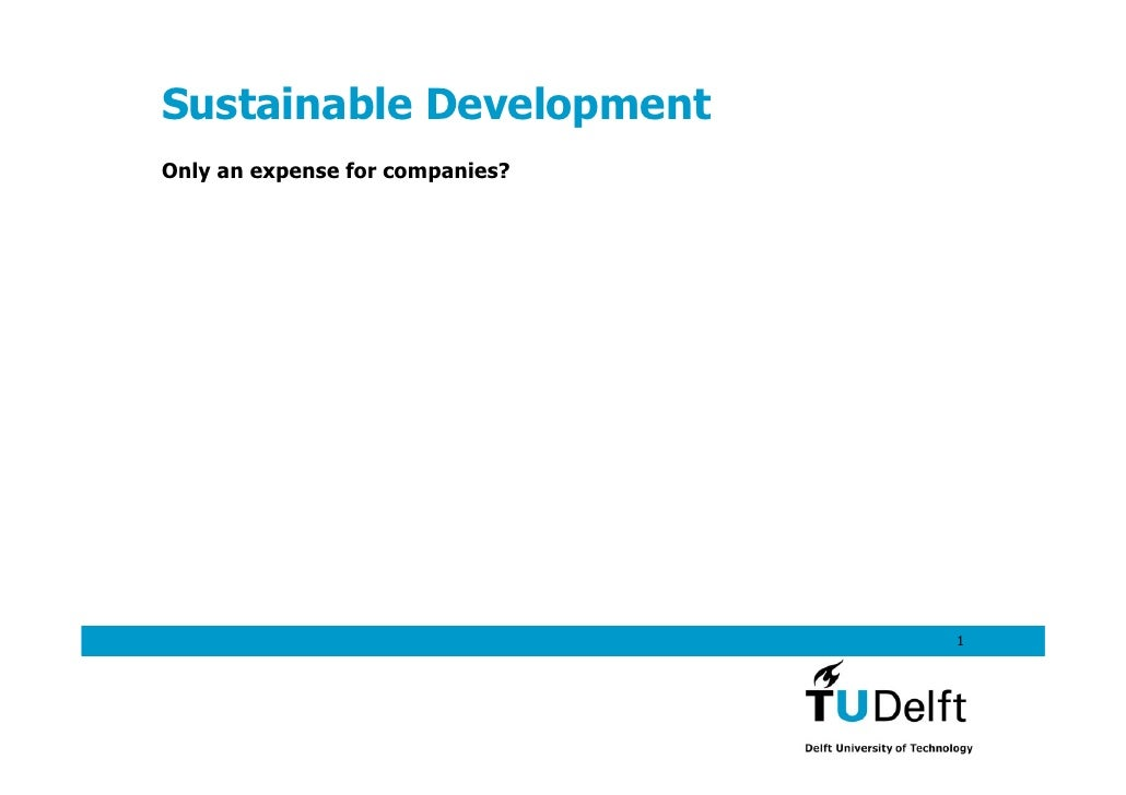 Sustainable Development Only an expense for companies?                                      1