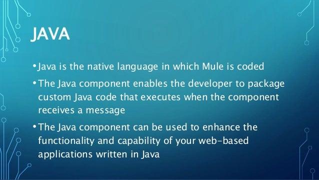 Mule Java Component
