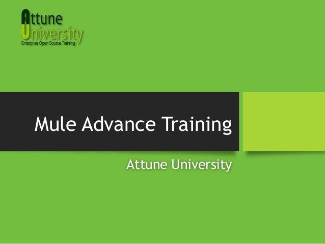 Mule Advance TrainingAttune University