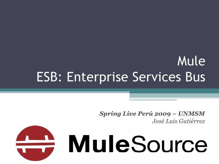 Mule ESB: Enterprise Services Bus Spring Live Perú 2009 – UNMSM José Luis Gutiérrez