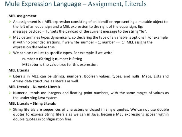 Mule expression language