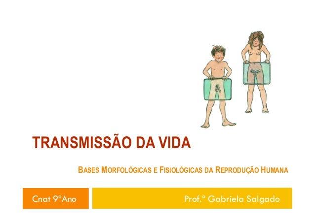 TRANSMISSÃO DA VIDA BASES MORFOLÓGICAS E FISIOLÓGICAS DA REPRODUÇÃO HUMANA  Cnat 9ºAno  Prof.ª Gabriela Salgado