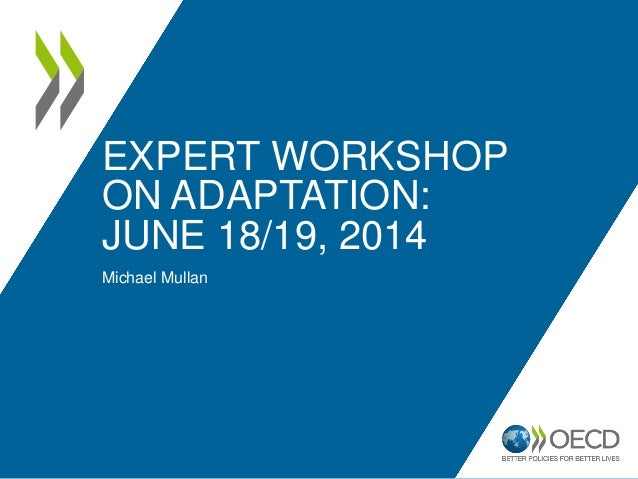 EXPERT WORKSHOP ON ADAPTATION: JUNE 18/19, 2014 Michael Mullan