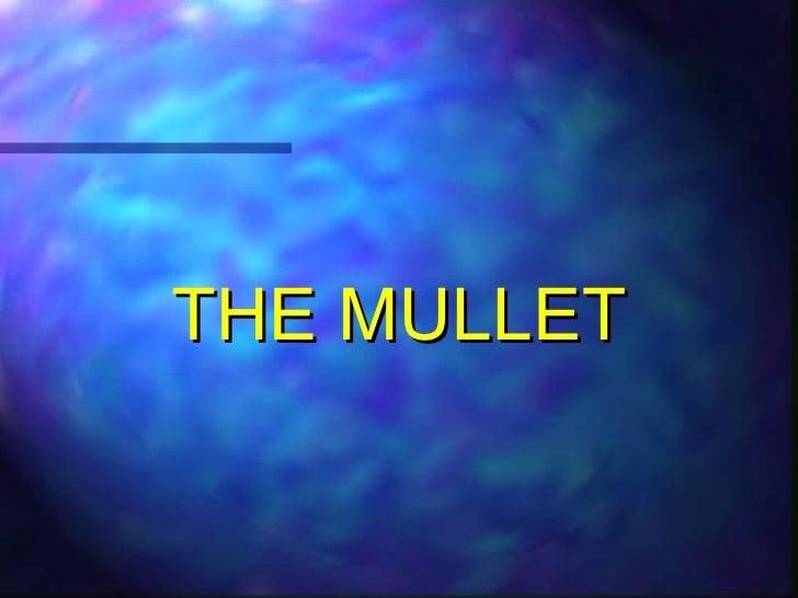 <ul><li>THE MULLET </li></ul>