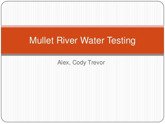 Mullet River Water Testing      Alex, Cody Trevor