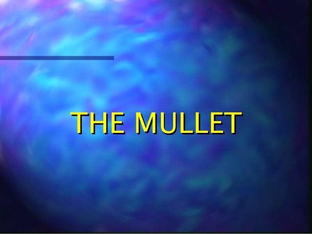 THE MULLETTHE MULLET