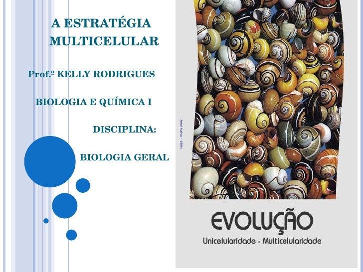 A ESTRATÉGIA  MULTICELULAR Prof.ª KELLY RODRIGUES BIOLOGIA E QUÍMICA I DISCIPLINA:  BIOLOGIA GERAL