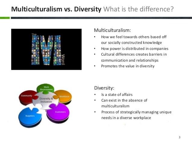 multiculturalism and diversity in the workplace essay Multiculturalism essay writing approximates to respect for diversity multiculturalism may also describe persons who are strong forces at work.