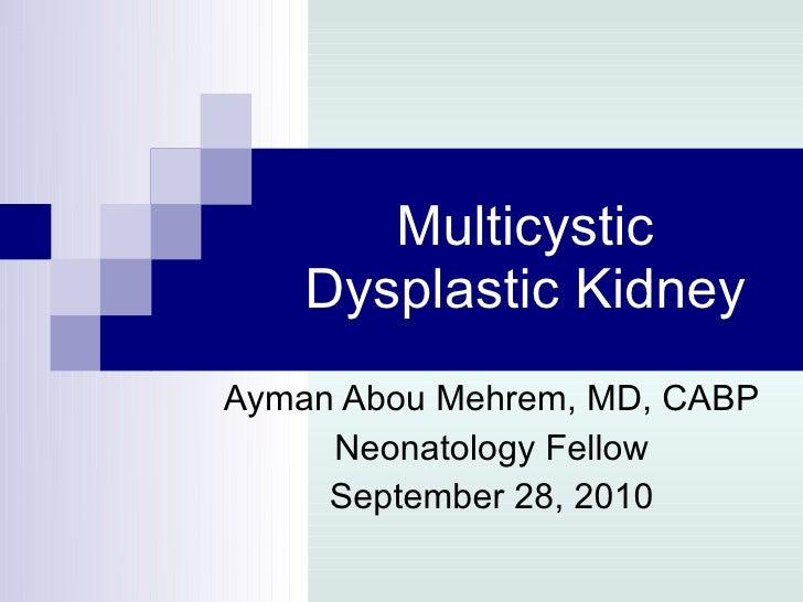 Multicystic Dysplastic Kidney Ayman Abou Mehrem, MD, CABP Neonatology Fellow September 28, 2010