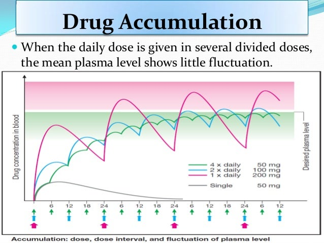 Drug Accumulation  The time required to reach steady state accumulation during multiple constant dosing depends on the ra...