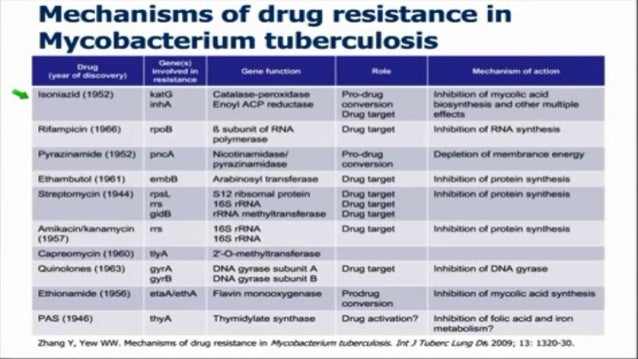 resistance of m tuberculosis essay Mycobacterium tuberculosis whole genome sequencing and protein structure modelling provides insights into anti-tuberculosis drug resistance and should prove to be a powerful and robust method to detect drug resistance mutations in m tuberculosis papers, zotero, reference manager.