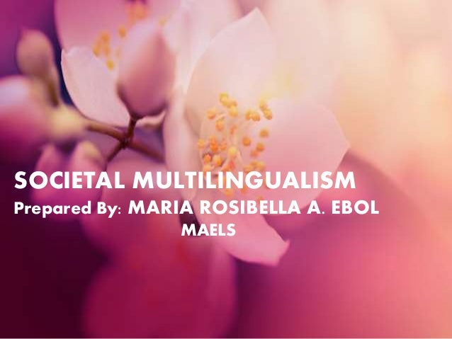 societal multilingualism Introducing multilingualism is a comprehensive and user-friendly introduction to the dynamic field the differences between individual and societal multilingualism.
