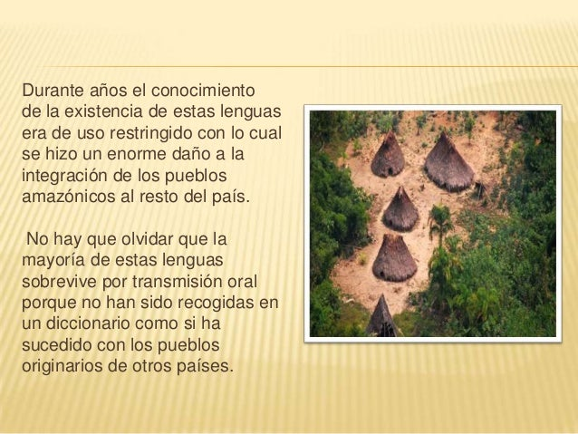 LENGUAS SELVÁTICAS En la selva se hablan muchas lenguas, Cuyo Número es difícil de establecer por proceder de distintas et...